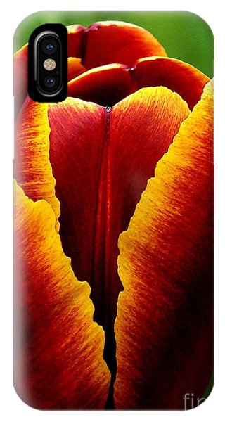 Flaming Heart Tulip IPhone Case