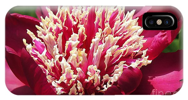 Flaming Peony IPhone Case