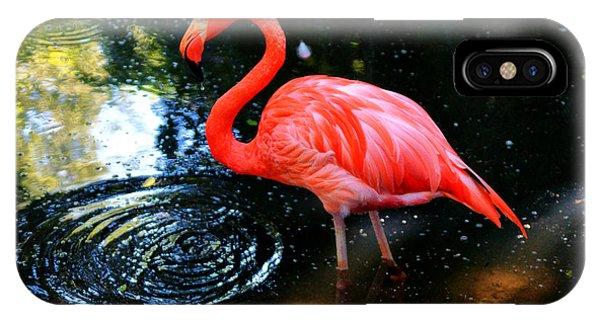 Flamingo 9 Phone Case by Dan Dennison