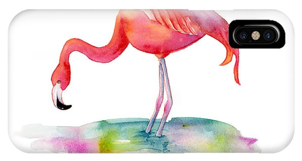 Hot iPhone Case - Flamingo Dip by Amy Kirkpatrick
