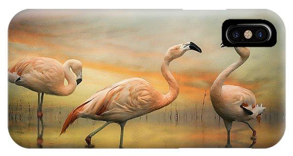 Flamingo Dusk IPhone Case