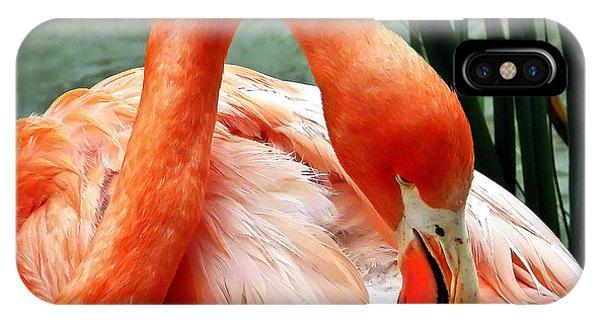 Flamingo Elegance IPhone Case