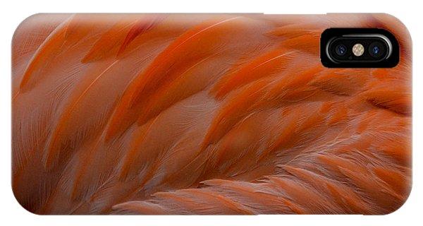 Flamingo Feathers IPhone Case