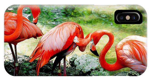 Flamingo Friends IPhone Case