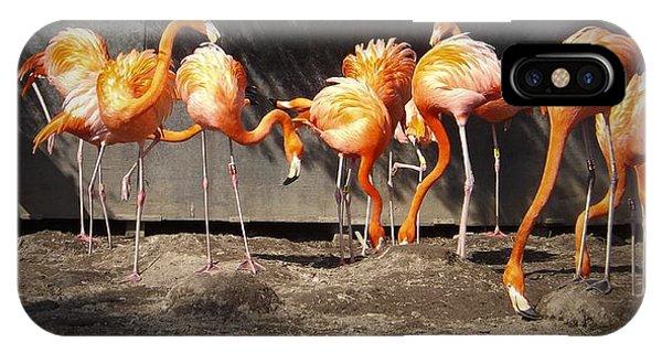 Flamingo Hangout IPhone Case
