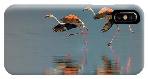 Flamingo Landing Phone Case by Yun Wang