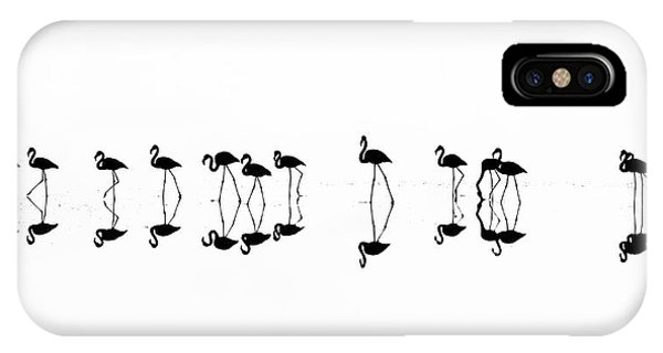Panorama iPhone Case - Flamingo Reflections by Xenophon Mantinios