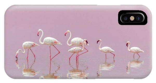 Flamingos Phone Case by Eiji Itoyama