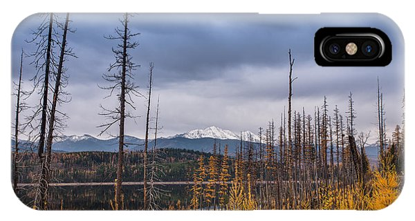 IPhone Case featuring the photograph Flathead National Forest by Adam Mateo Fierro