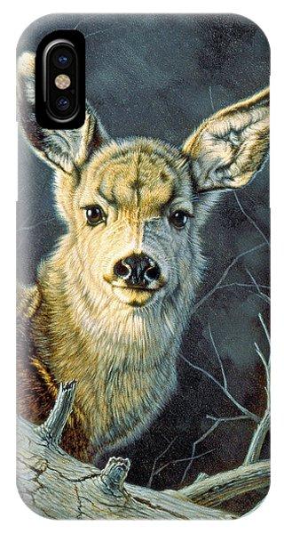 Mule Deer iPhone Case - Fleeting Visit- Fawn by Paul Krapf