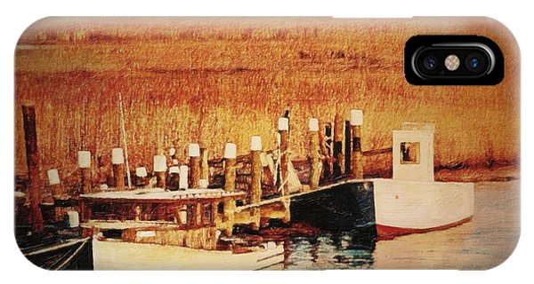 Tidal Marsh iPhone Case - Flemings Landing Delaware by Lianne Schneider