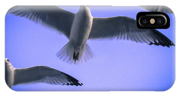 Flew Under The Moon IPhone Case
