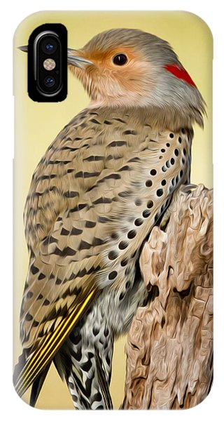 Northern Flicker iPhone Case - Flicker by Bill Wakeley