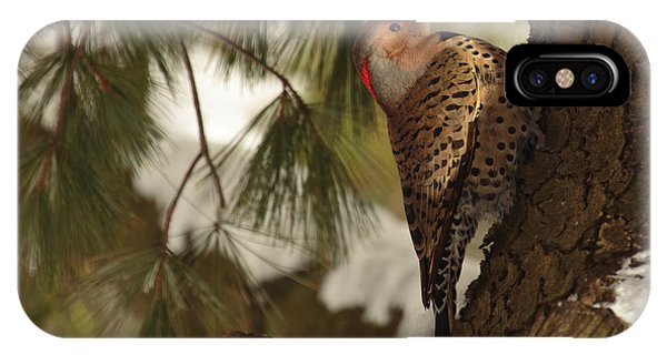 Fowl iPhone Case - Flicker by Everet Regal