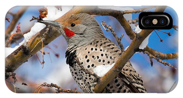 Flicker In Snow IPhone Case