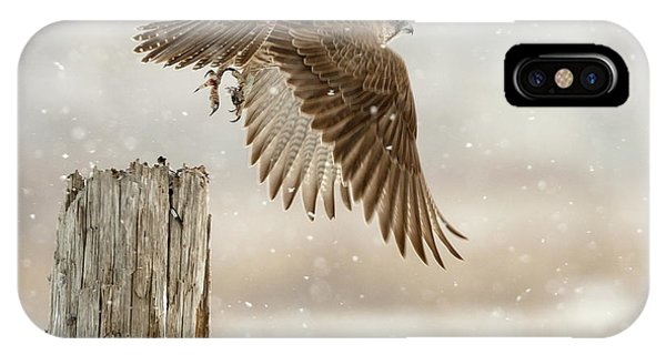Falcon iPhone Case - Flight Against The Snowstorm by Osamu Asami