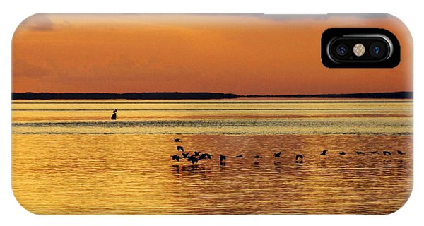 Flight At Sunset IPhone Case