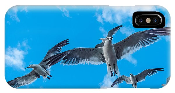 Flight Phone Case by CarolLMiller Photography