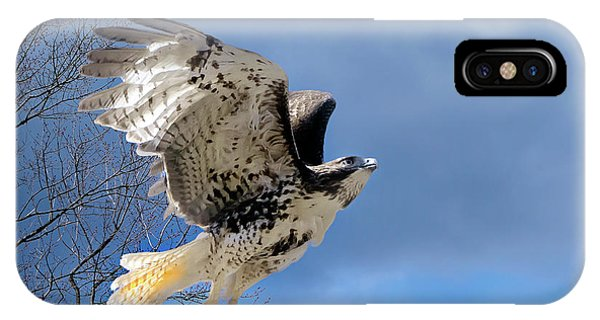 Red Tail Hawk iPhone Case - Flight Of The Red Tail by Bill Wakeley