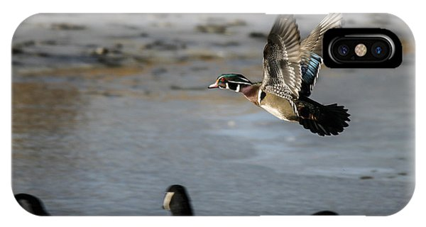 Flight Of The Wood Duck IPhone Case