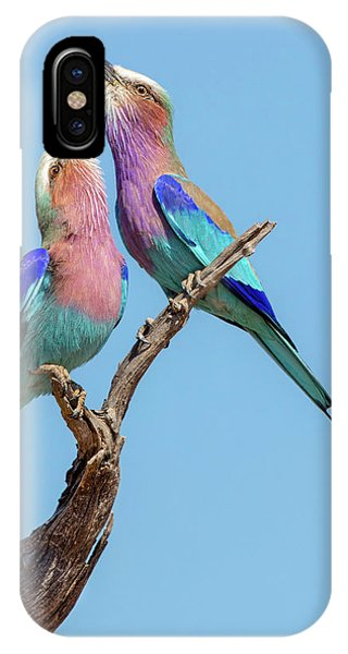 Flirting Rollers Phone Case by Alessandro Catta