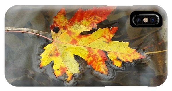 Floating Autumn Leaf IPhone Case