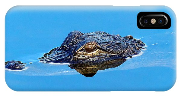 Floating Gator Eye IPhone Case