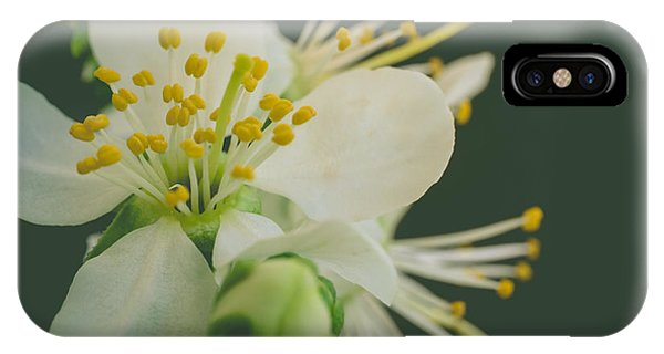 Close Focus Floral iPhone Case - Floating In The Dark by Marco Oliveira