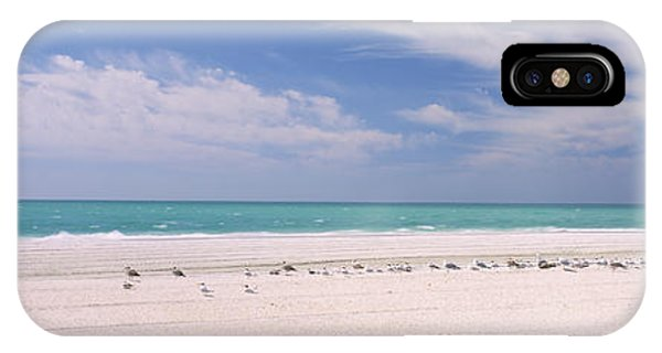 Flock Of Seagulls On The Beach, Lido IPhone Case