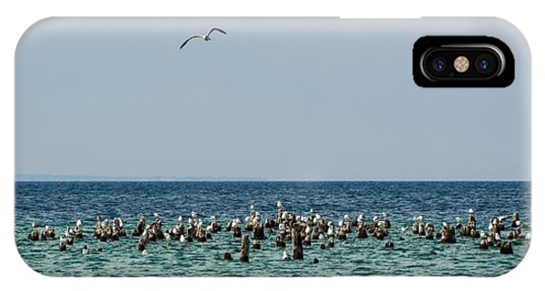 Flock Of Seagulls IPhone Case