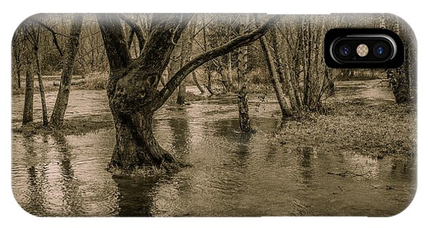 Flooded Tree IPhone Case