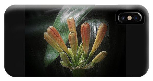 Flora 1 IPhone Case