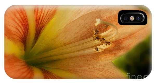 Floral 3 IPhone Case
