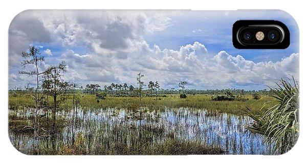 Florida Everglades 0173 IPhone Case