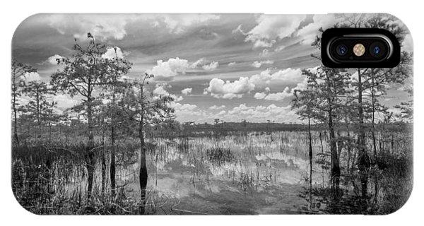 Florida Everglades 5210bw IPhone Case