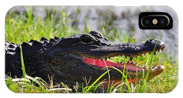 Gator Grin IPhone Case