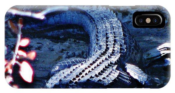 Florida 'gator IPhone Case