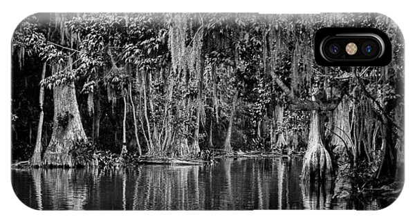Florida Naturally 2 - Bw IPhone Case