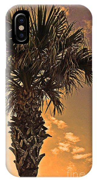 Florida Palm IPhone Case