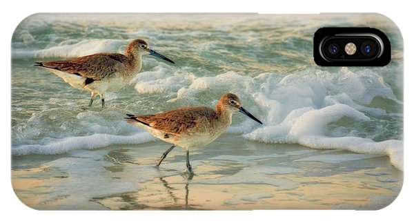 Florida Sandpiper Dawn IPhone Case
