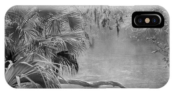 Florida Swamp Lan 382 IPhone Case