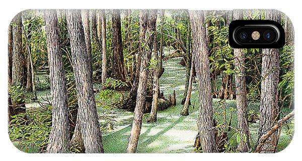 Florida Swamp IPhone Case