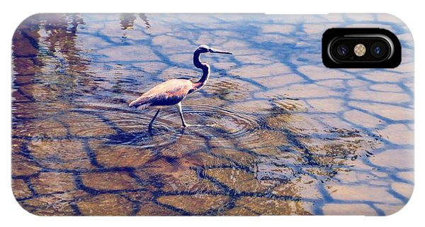 Florida Wetlands Wading Heron IPhone Case