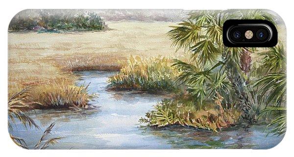 Florida Wilderness IIi IPhone Case