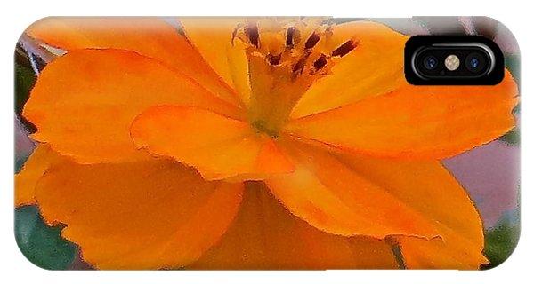 Flower 115 Phone Case by Patsy Pratt