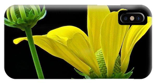 Flower 119 Phone Case by Patsy Pratt