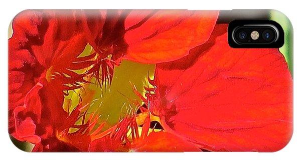 Flower 123 Phone Case by Patsy Pratt