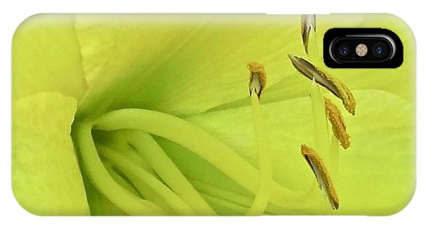Daylily 130 Phone Case by Patsy Pratt