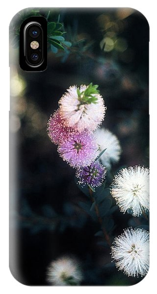 Flower 47 IPhone Case