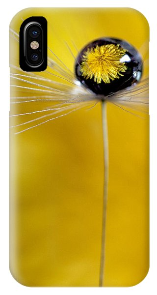 Flower And Seed IPhone Case